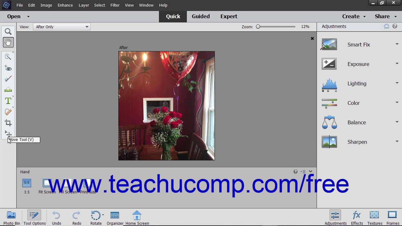 Photoshop Elements 2019 Tutorial The Quick Edit Mode Adobe Training
