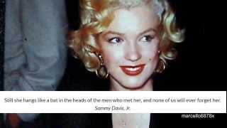 marilyn monroe 1952 a different look rare pictures of the legend hd