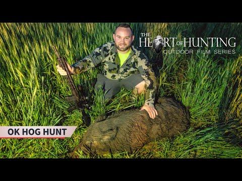 Boar Down!!! Oklahoma Hog Hunt (LOTS OF PIGS!!!)