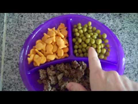 Breakfast, Lunch, and Dinner + Snacks! (for Zoe!)
