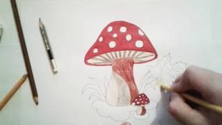 How to draw mushrooms - Как рисовать грибы - 2019