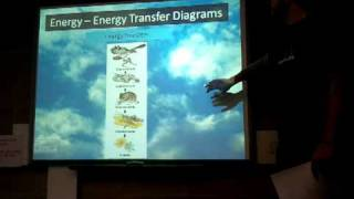KS3 ENERGY  part 2 of 6 - energy flow diagram