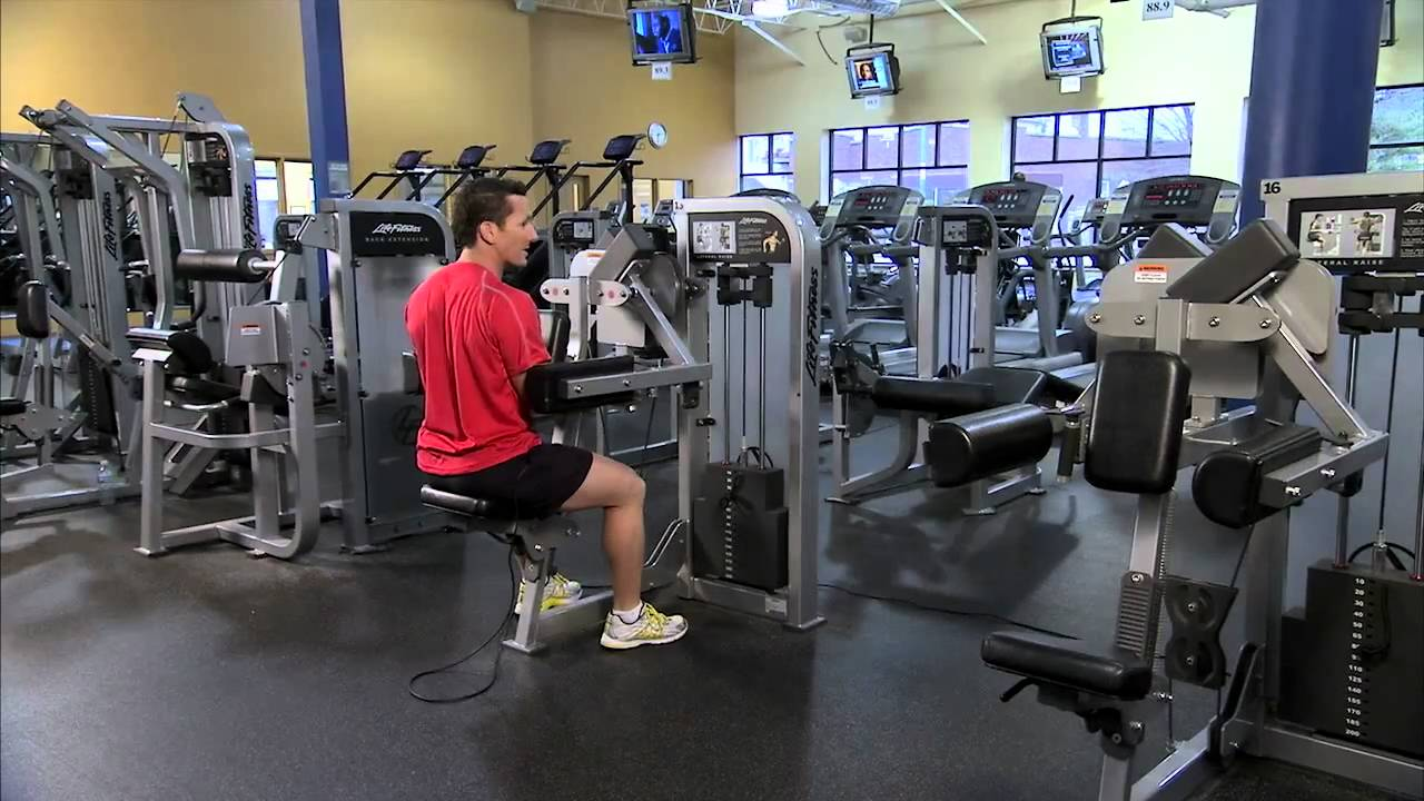 Are Free Weights or Machines Better for Building Muscle