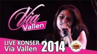 Konser Via Vallen - Lumpuhkan Ingatanku @Demak, 1 Maret 2014