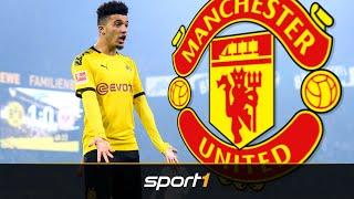 Sancho-Poker wird heiß! United droht BVB mit Verhandlungs-Abbruch | SPORT1 - TRANSFERMARKT