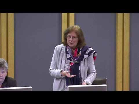 National Assembly for Wales Plenary 24.01.18