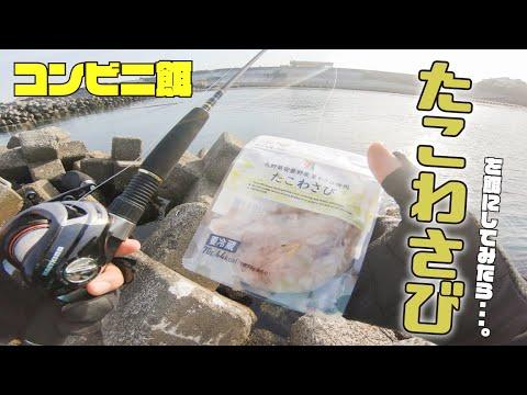 【穴釣り】居酒屋の定番「たこわさび」を餌に釣りすると・・・!?【コンビニ餌シリーズ#2】