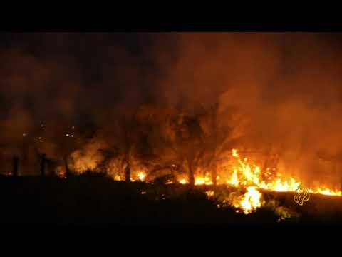 ولايات في البرازيل تطلب مساعدة الجيش لمكافحة الحرائق المشتعلة في غابات الأمازون  - نشر قبل 2 ساعة