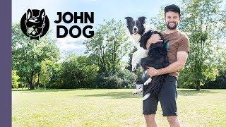 Jak nauczyć psa reagowania na odwołanie? – TRENING – John Dog