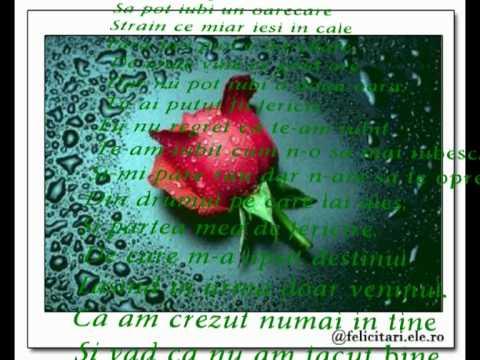 trandafirul de la tine.mpg