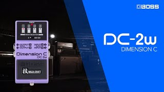 BOSS DC-2W Dimension C Sound Examples