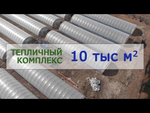 видео: Промышленные теплицы для тепличного бизнеса