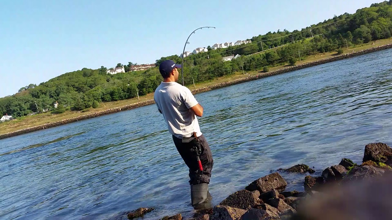 Cape cod canal fishing with marlon youtube for Cape cod canal fishing report