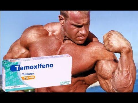 TAMOXIFENO VS INHIBIDORES DE LA AROMATASA