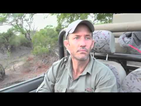 October 26, 2015 - WildEarth Safari  AM drive