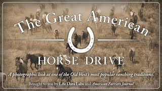 The Great American Horse Drive: Part 1 - The Drive Gets Underway