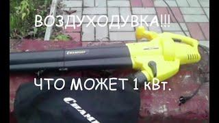 ВОЗДУХОДУВКА ЭЛЕКТРО, САДОВЫЙ ПЫЛЕСОС Что может 1 кВт!!!