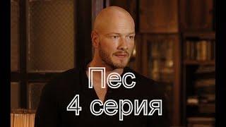 Пес 3 сезон 4 серия Анонс и дата выхода на русском языке
