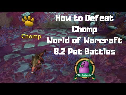 How To Defeat Chomp With 2 Pets 8 2 Pet Battles World Of Warcraft Youtube