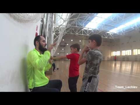 видео трансляция белатор 180