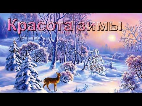 зима фото красоты