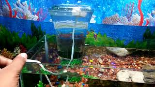 How to make a multi level aquarium at home - try it yourself