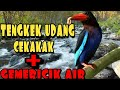 Masteran Tengkek Udang Cekakak  Mp3 - Mp4 Download