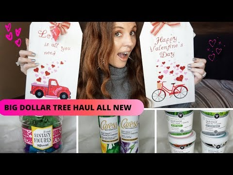 WOW ALL NEW DOLLAR TREE HAUL| DOLLAR TREE IS STEPPING UP THEIR GAME