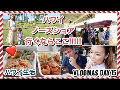 ハワイ・ノースショア半日観光に密着!!!!!【Vlogmas Day 15】ハワイ主婦 生活 |海外出産 妊娠|モッパン 食レポ
