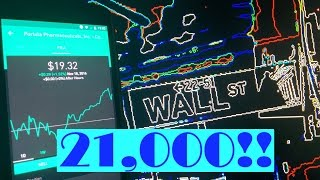 Robinhood APP - $21,000 High Dividend Yield Stock Portfolio Review!