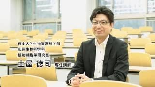 日本大学生物資源科学部 教員紹介(応用生物科学科)