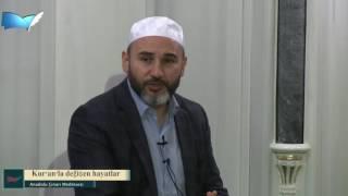 3) Nefis Muhasebemiz (Kur'an'la değişen hayatlar) - İdris Polat