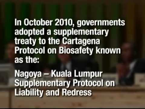 Cartagena Protocol on Biosafety Kh version