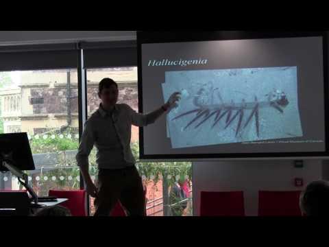 The origins of Ecdysozoan body plans