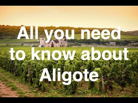 wine article What is Aligote