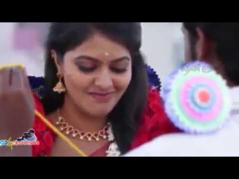 WhatsApp Status - Saravanan Meenakshi Vijay TV Serial Love Propose scene - Entertainment Videos