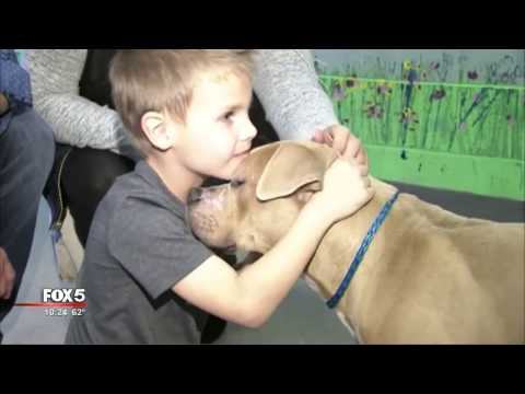 Texas family travels to adopt shelter dog