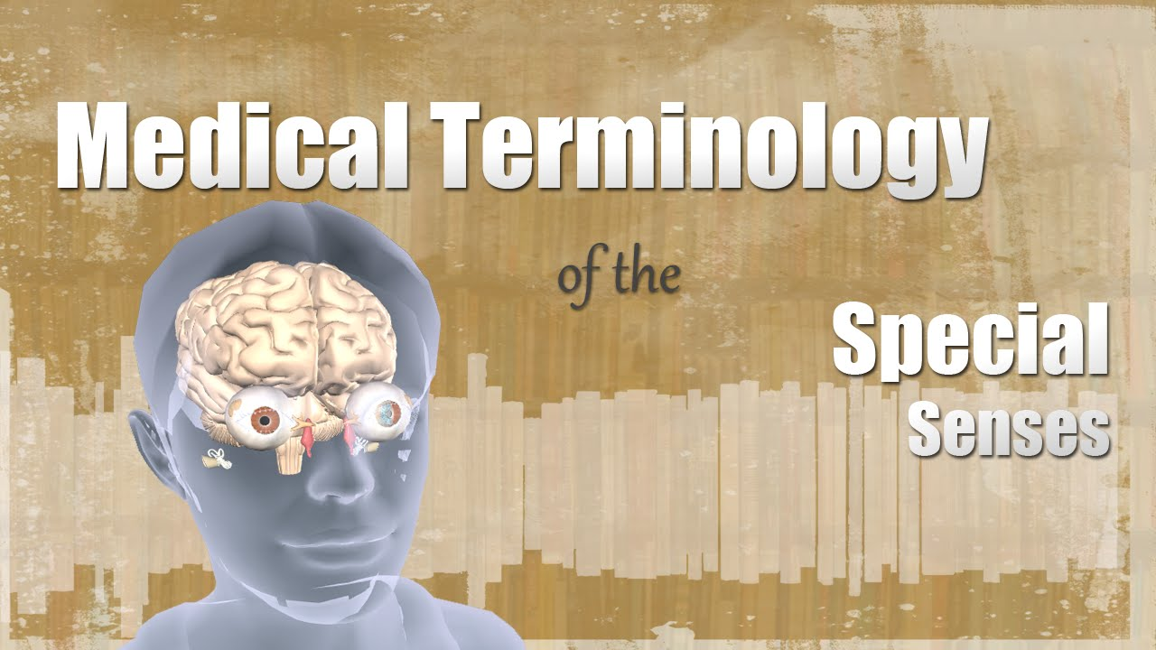 Medical Terminology of the Special Senses - YouTube