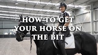 How To Get Your Horse On The Bit - Dressage Mastery TV Ep 118