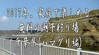 2017年3月28日に、銚子市某海岸に潮干狩りの下見をして参りました。小粒...