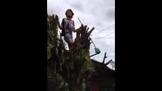 Download lagu Bailarín trolo electrocutado MP3