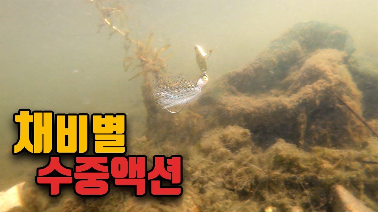 [루어 수중액션] 프리리그 / 네꼬리그 / 노싱커웜