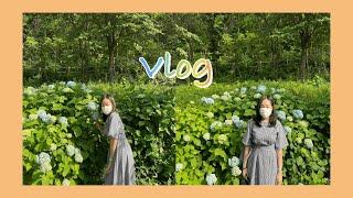 [VLOG] 일상브이로그| 로제찜닭|감자탕|산낙지|꽃게…