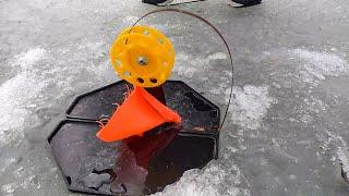 Последний лед Закрытие сезона щука на жерлицы