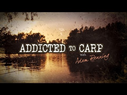 Addicted to Carp with Adam Penning
