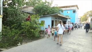 Utila, Honduras: Above The Surface