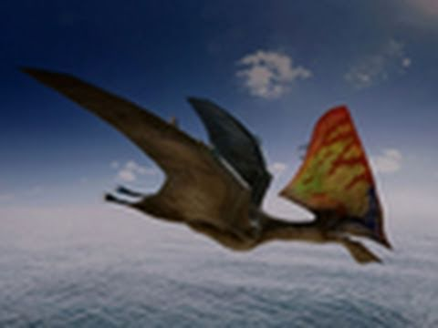 Walking With Dinosaurs 3d Wallpaper Flying Monsters 3d National Geographic Youtube