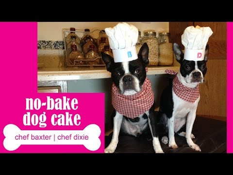 how to make a dog safe cake