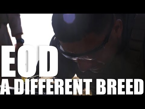 A Different Breed | EOD Technicians