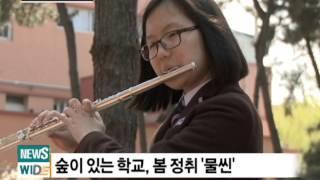 포항동성고등학교에찾아온봄-HCN경북케이블방송뉴스